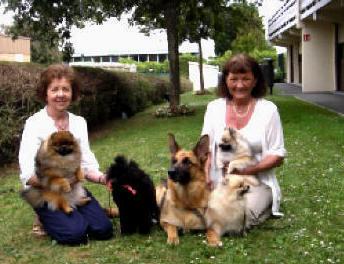 hundeutstillinger i utlandet